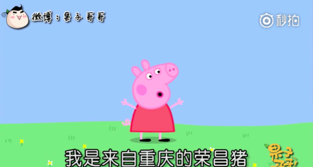 Peppa Pig Has Spawned a Panoply of Chinese Memes