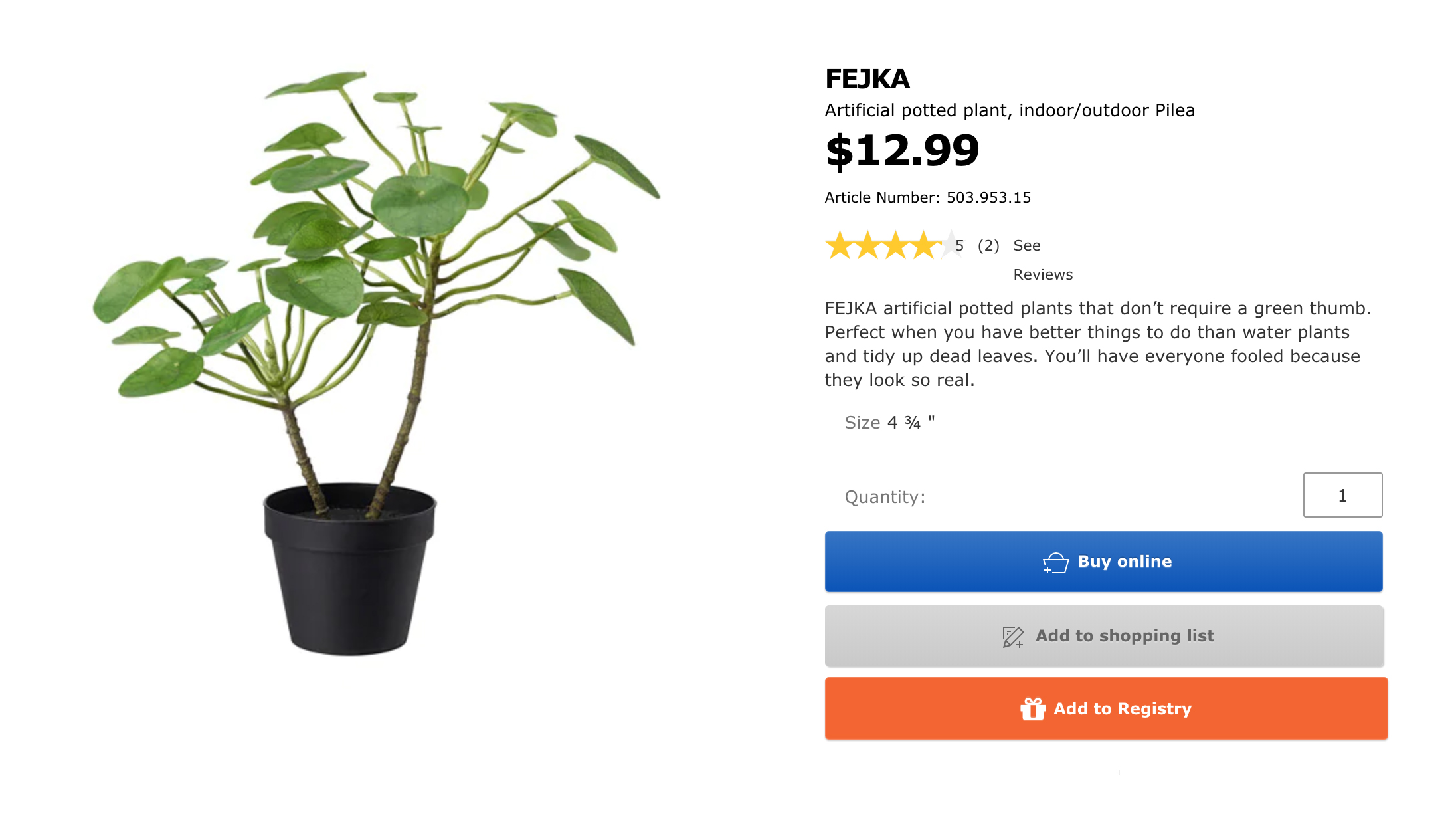 Chinese Money Plant Ikea Where To Radii China